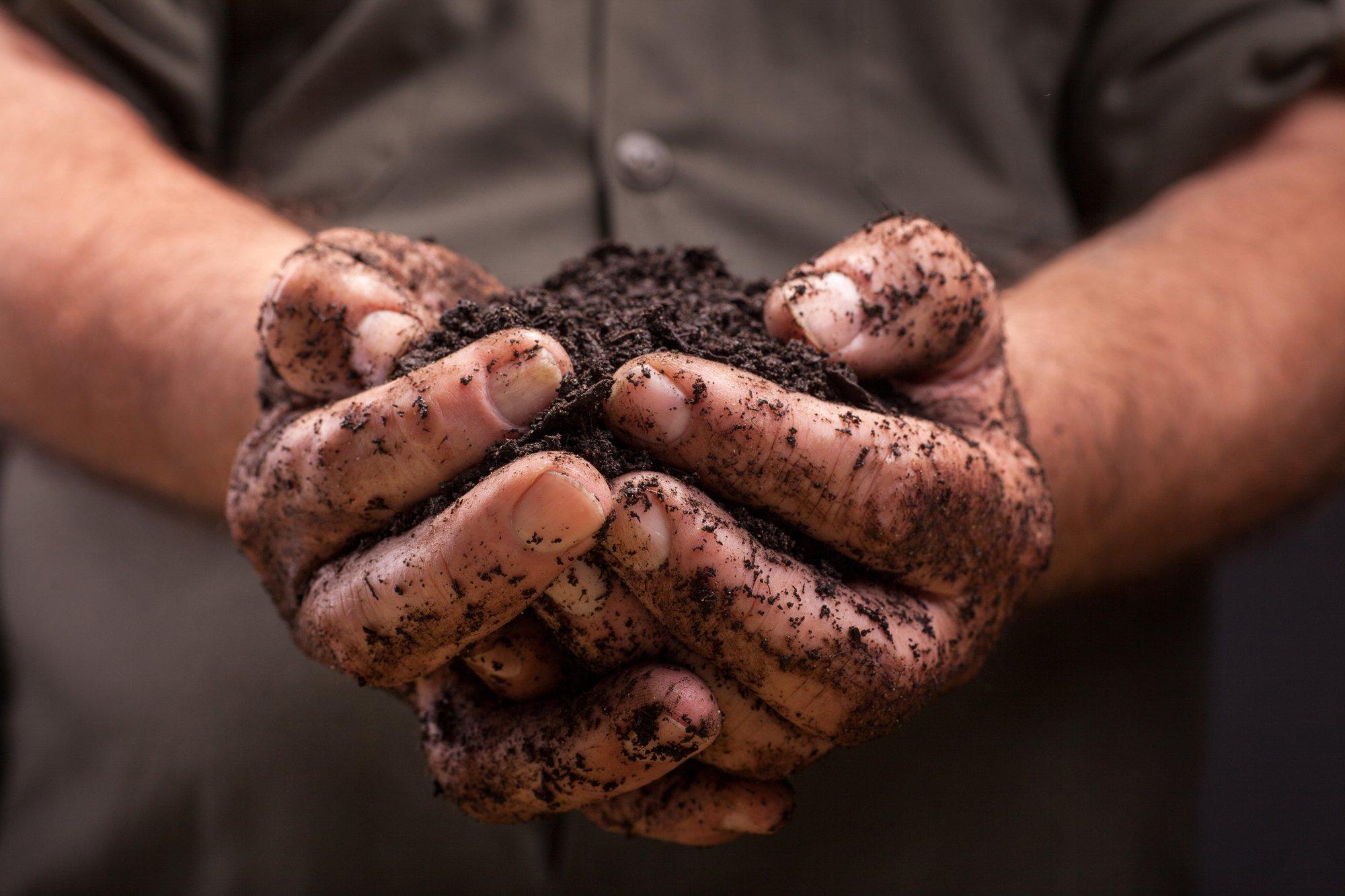 Nutrient-rich soil held in a farmer's hands