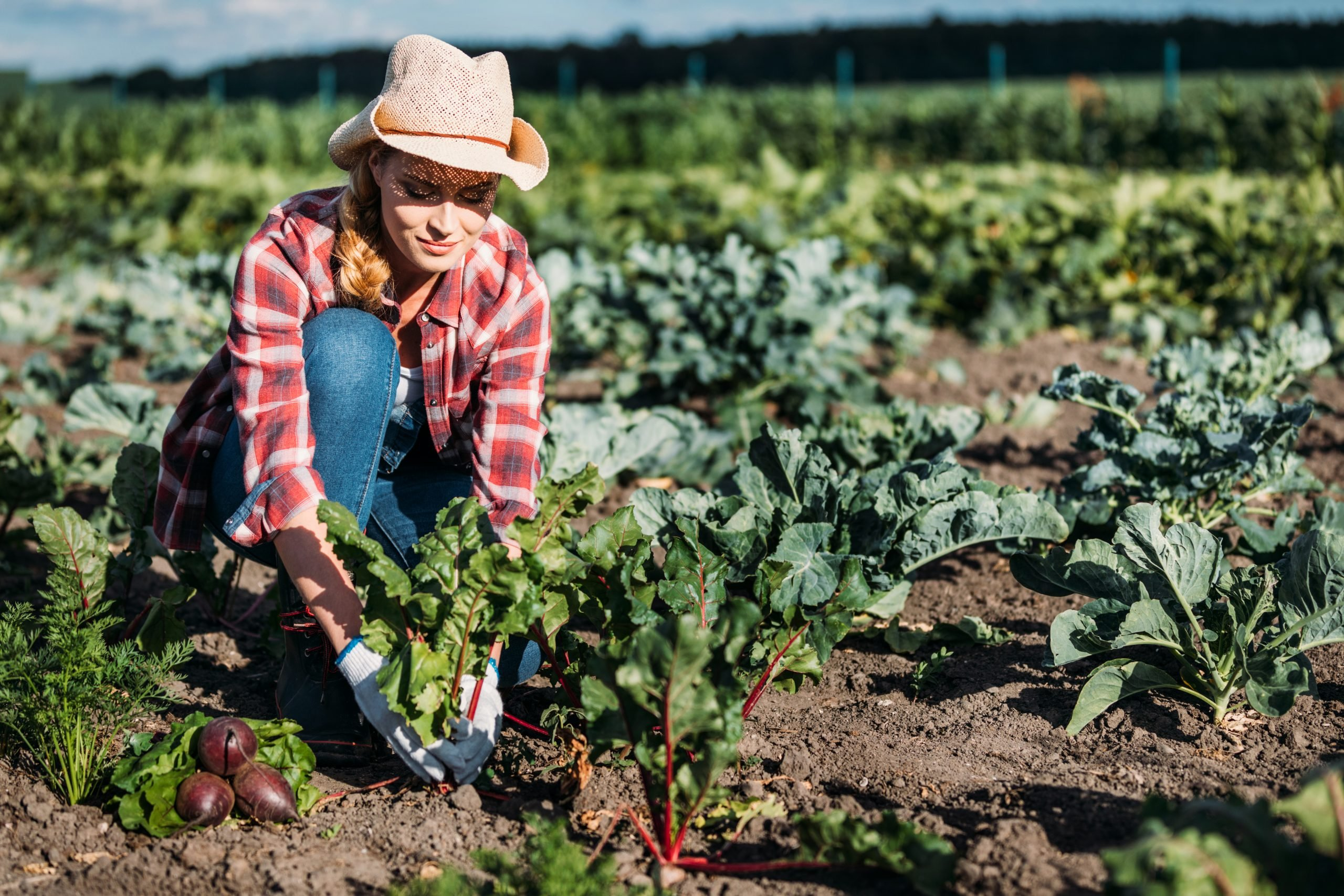 Female Farmer Tending to Specialty Crops