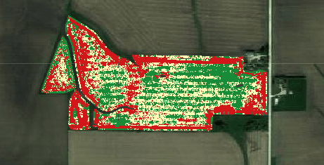 Economic heat map of a real IA field