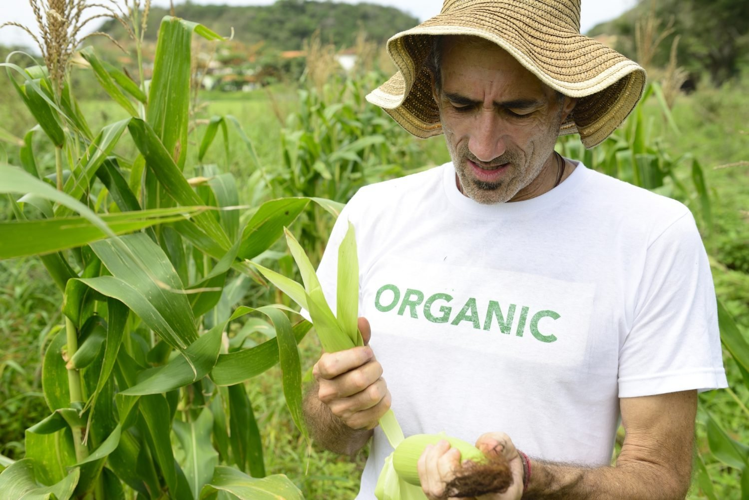 Organic t-shirt on farmer in field