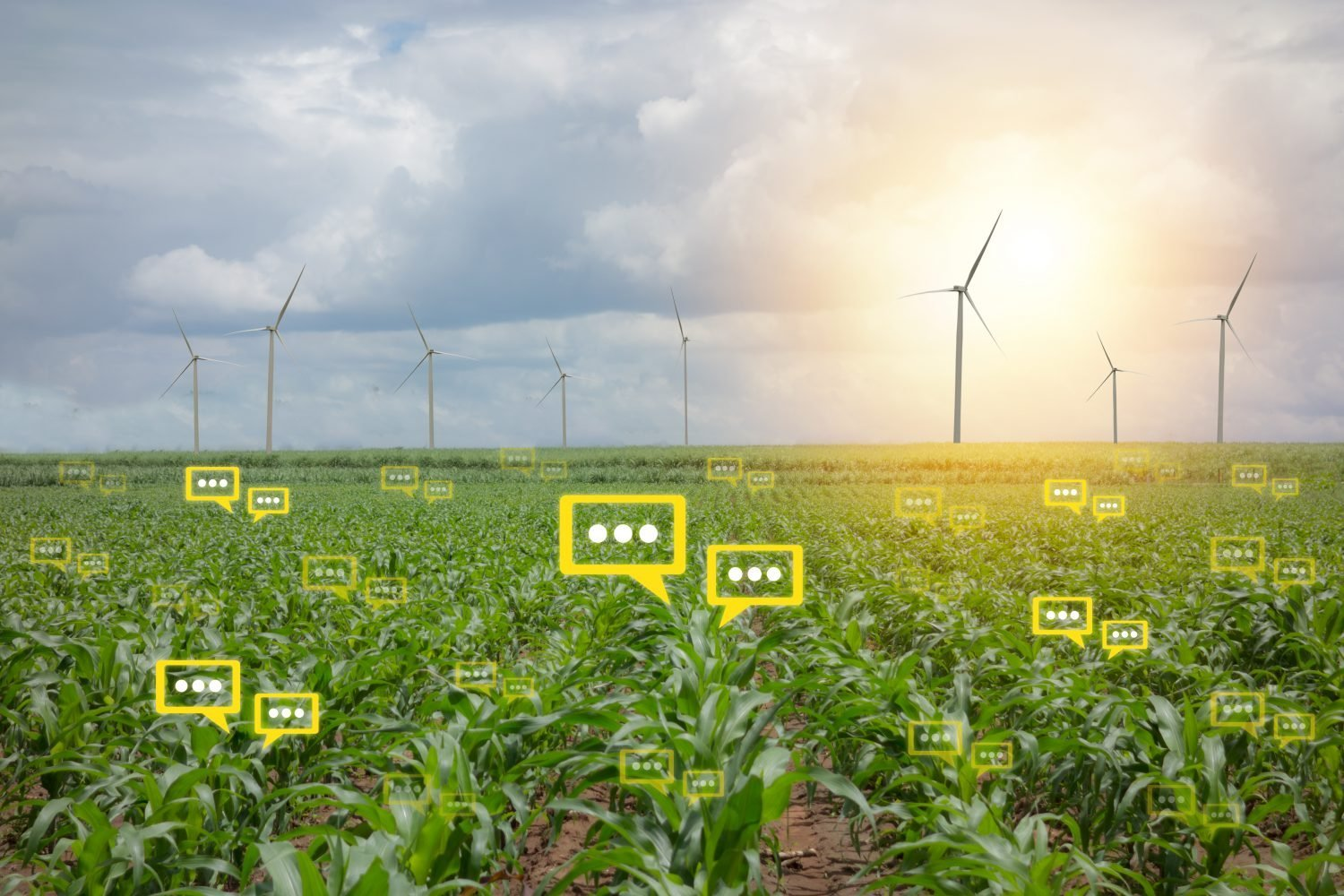 Crop farm with digital thought boxes implying big data information